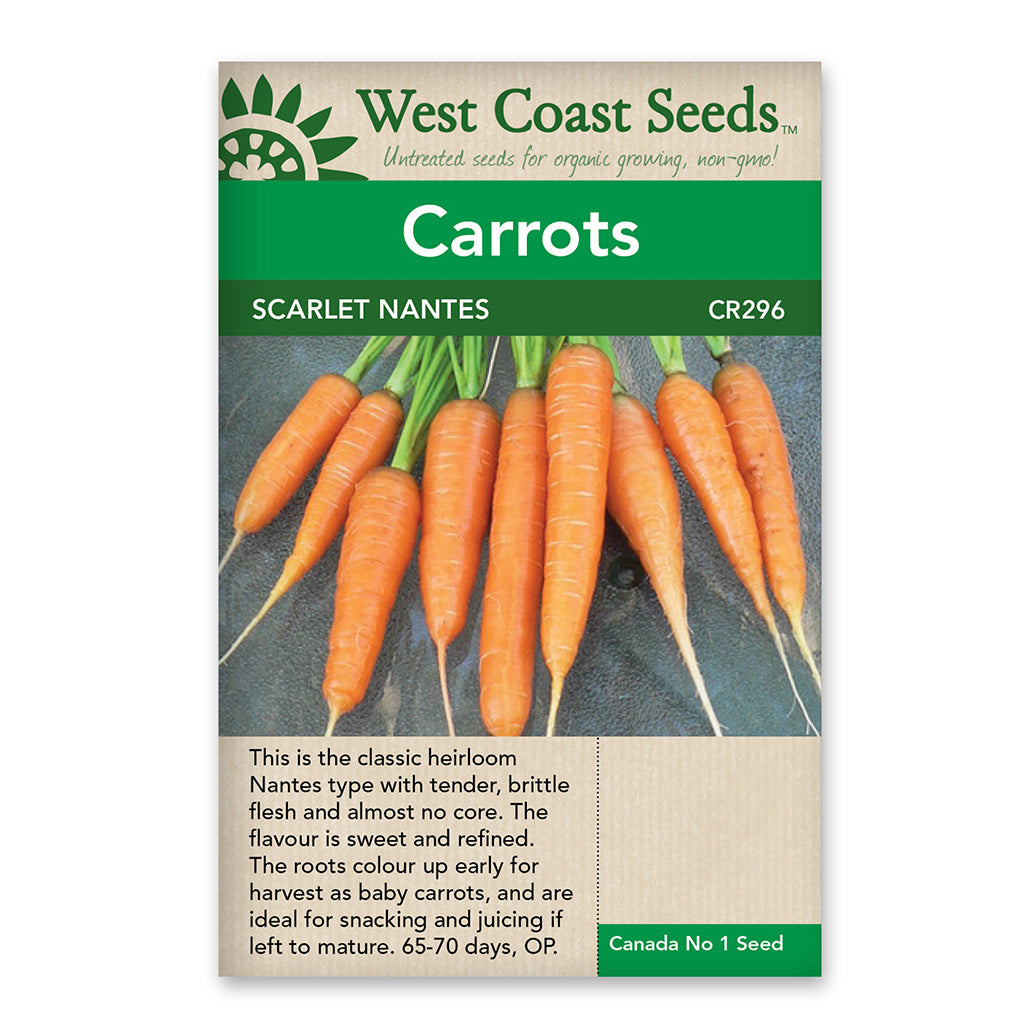Carrots Scarlet Nantes Seeds