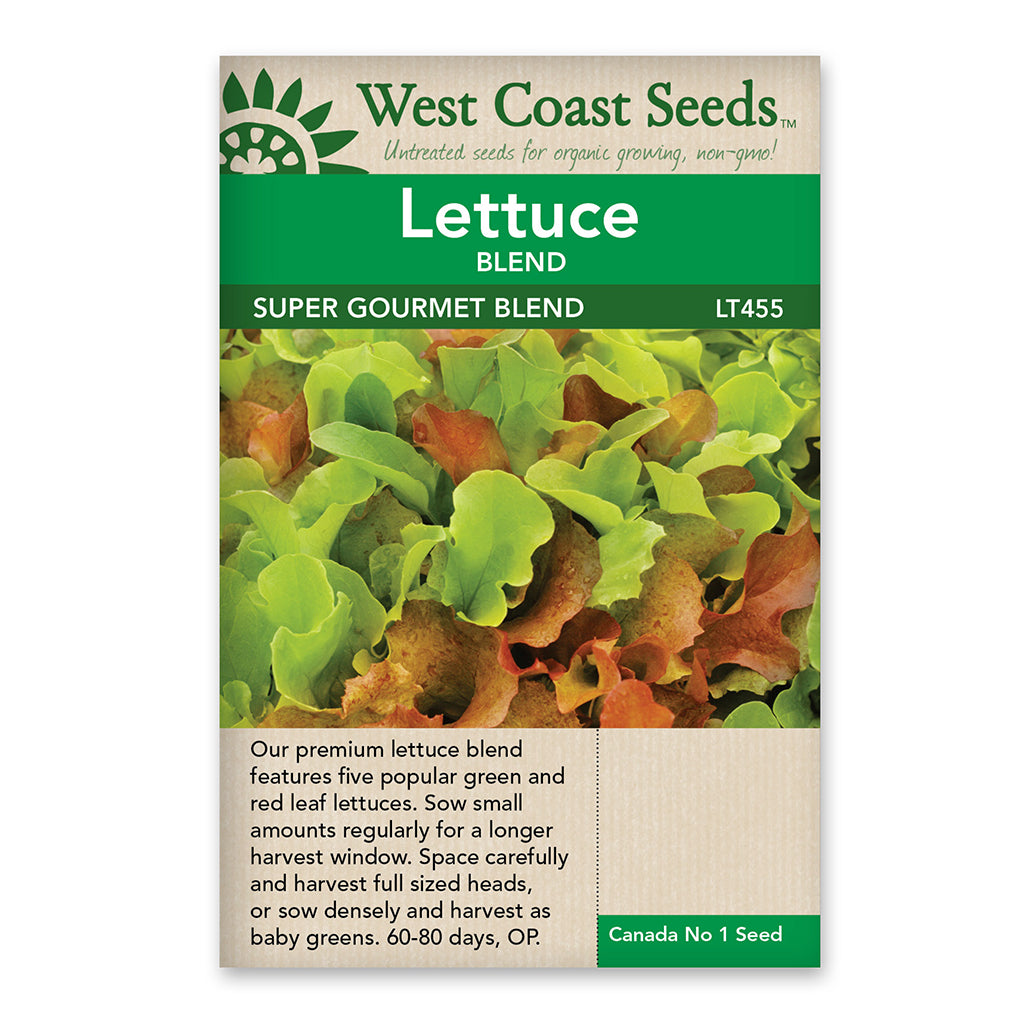 Lettuce Super Gourmet Salad Seeds