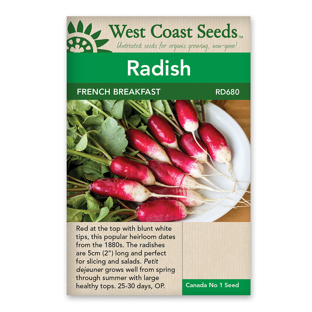 Radishes French Breakfast Seeds