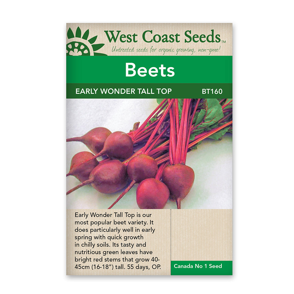 Beets Early Wonder Tall Top Seeds