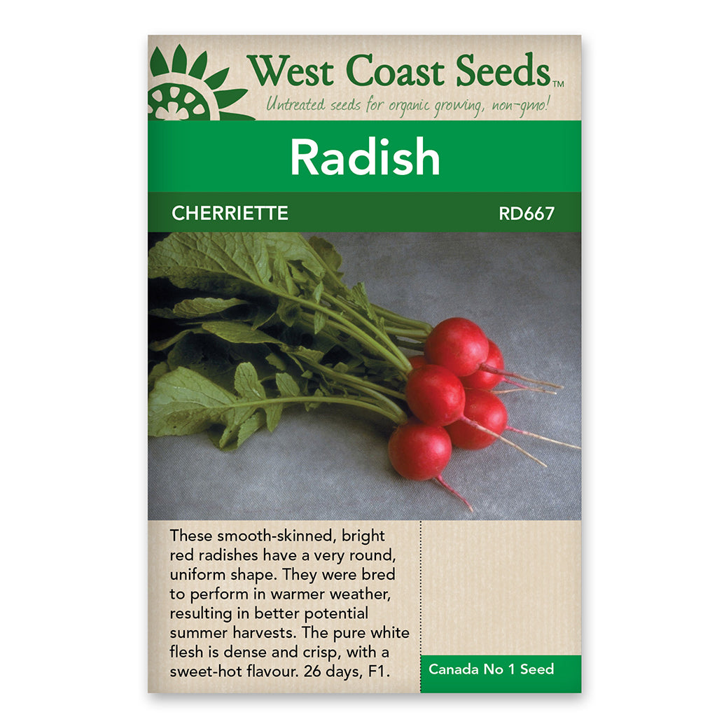 Radishes Cherriette Seeds