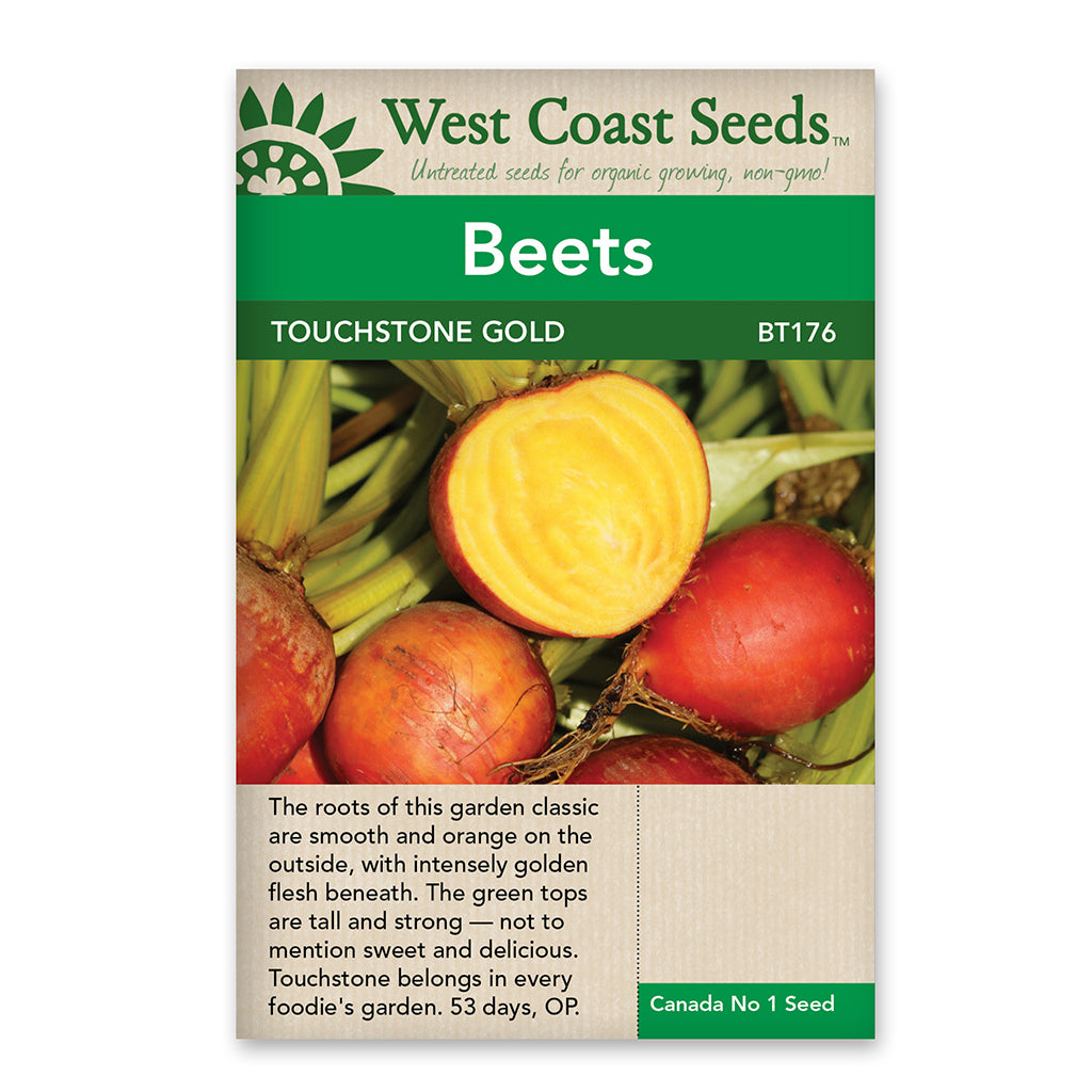 Beets Touchstone Gold Seeds