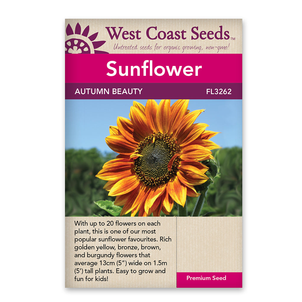 Sunflowers Autumn Beauty Seeds
