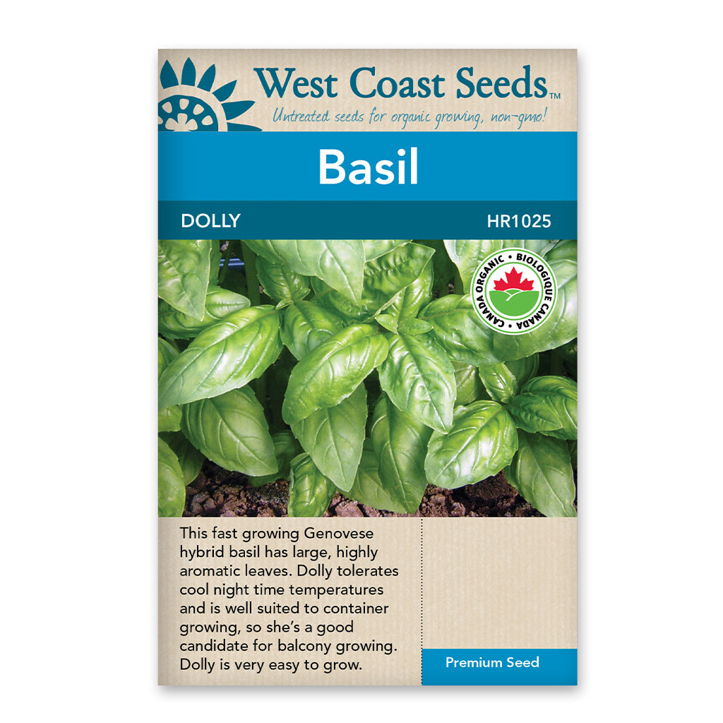 Basil Dolly Certified Organic Seeds