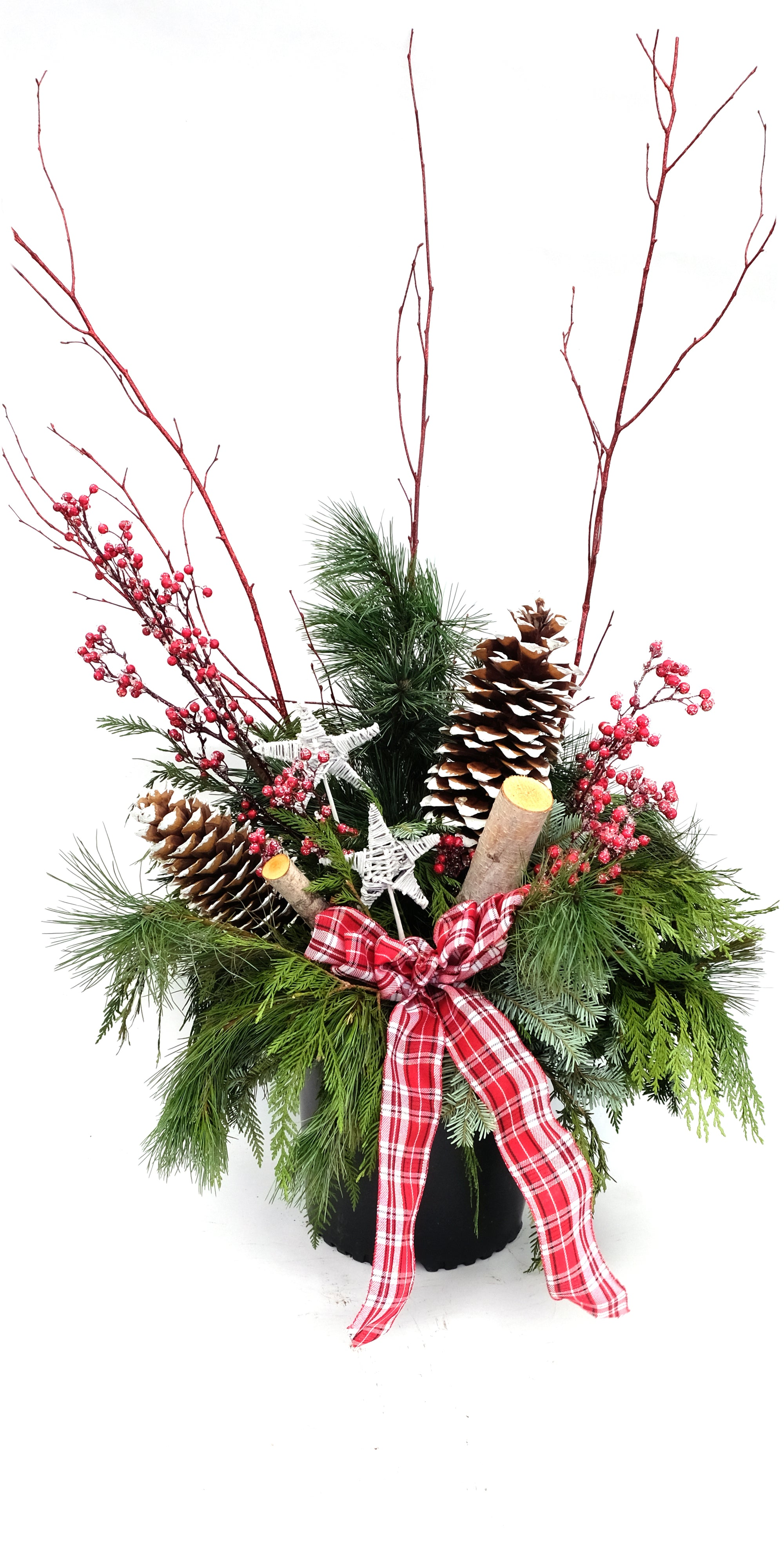 Large Birch, Berry and Cones (Stars) Urn Arrangement