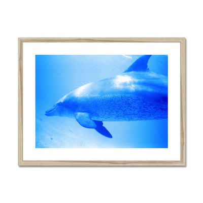 Oleen Joy Framed & Mounted Print