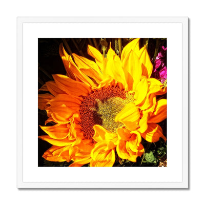 Sunflower Joy Shines * Up* Framed & Mounted Print | Feel Good Images