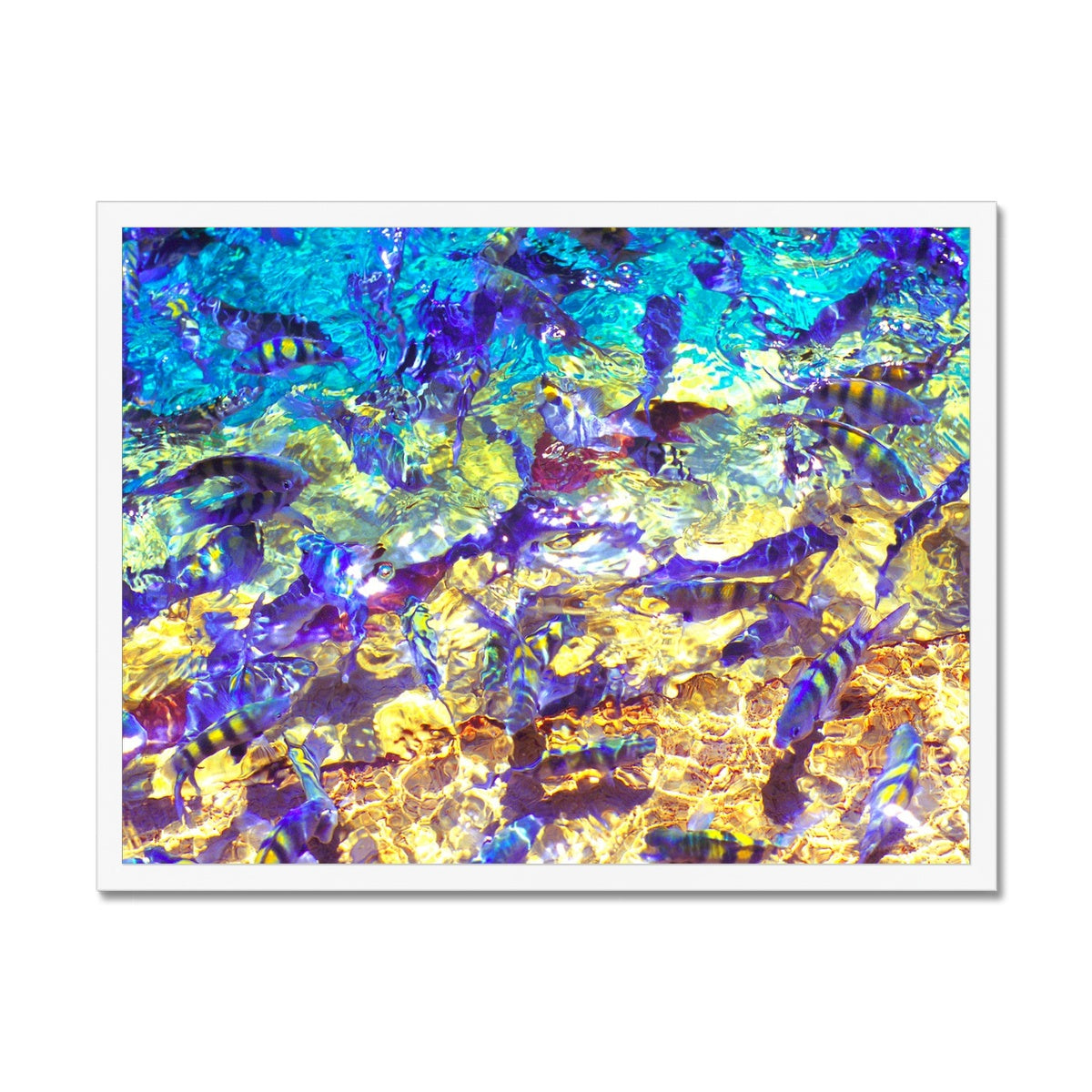 La Natural Piscina - San Andres Colombia Framed Print