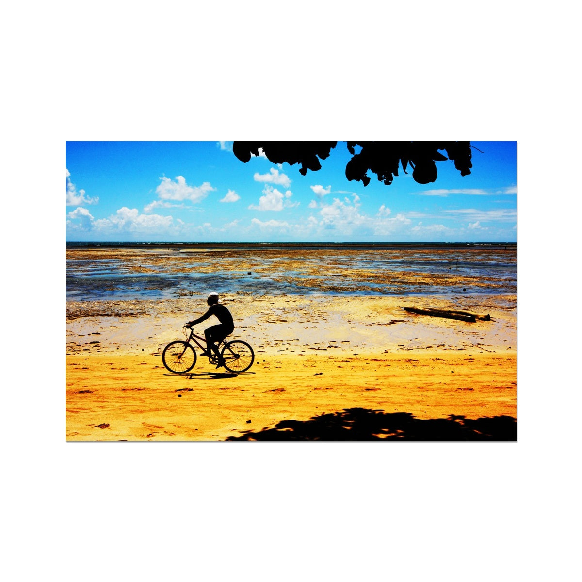 Bahia Bicyle Dreams - Brasil Photo Art Print