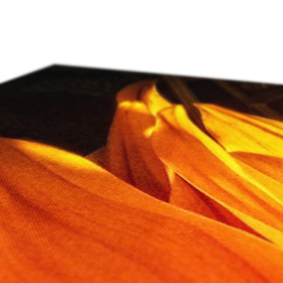 Sunflower Joy Shines * Up* Canvas