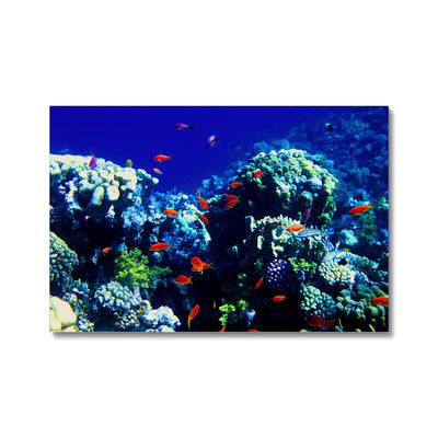 The Blue Hole - The Red Sea - Egypt - Canvas