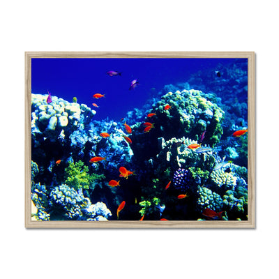 The Blue Hole - The Red Sea - Egypt Framed Print | Feel Good Images