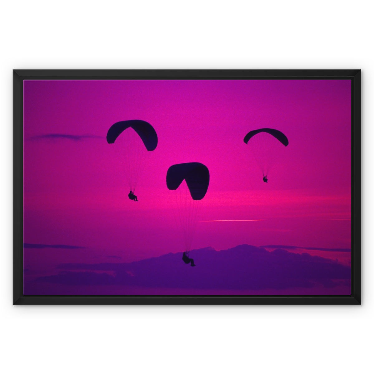Gliders Framed Canvas