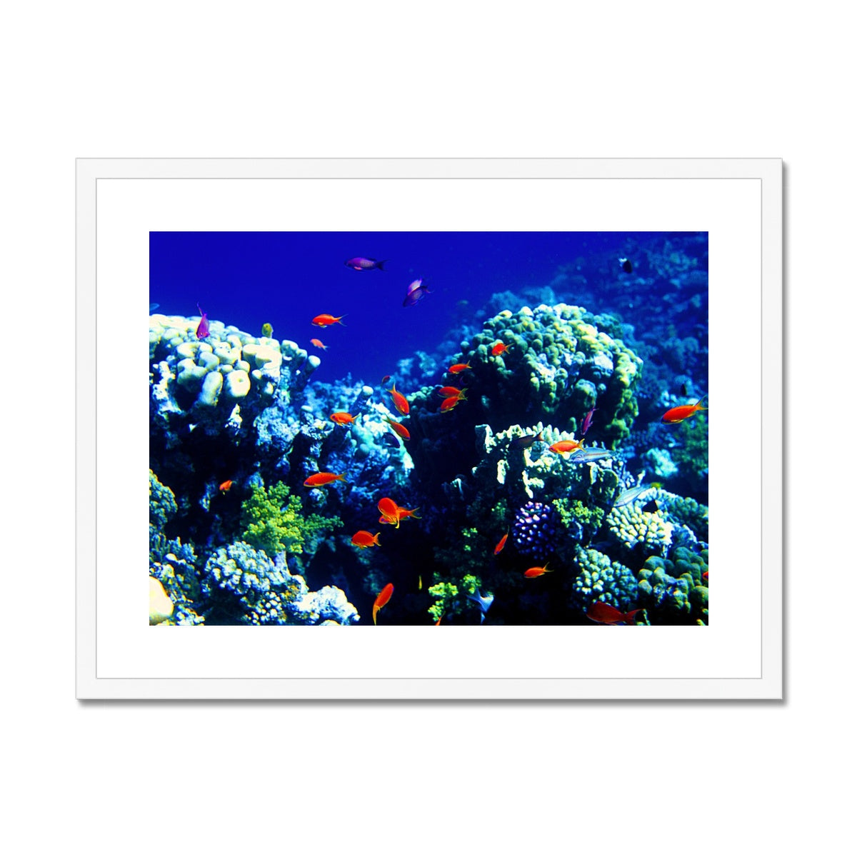 The Blue Hole - The Red Sea - Egypt Framed & Mounted Print