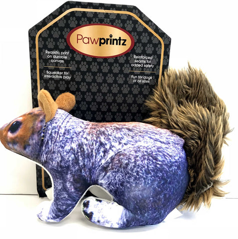 """Paw Printz"" Colorful Squirrel Dog Toy"