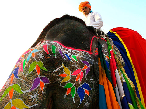 Traditional Indian Elephant Motifs gillyweed