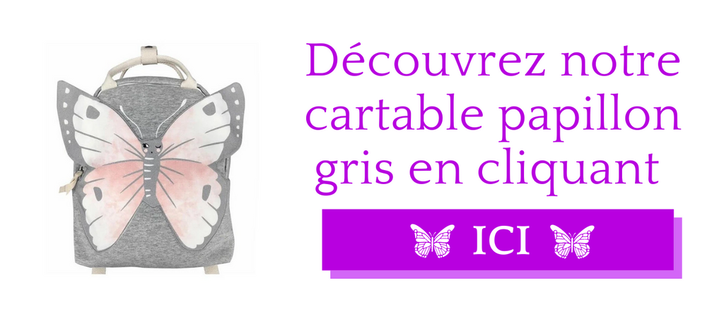 Cartable papillon gris