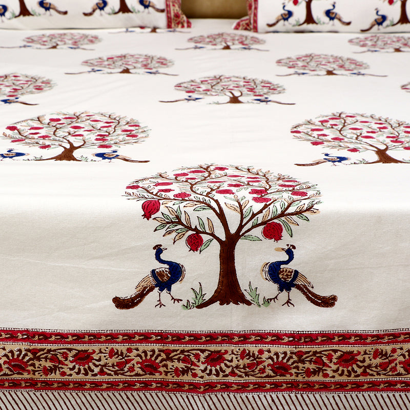 Cotton Bed Sheet - Peacock Series White with Pink Border