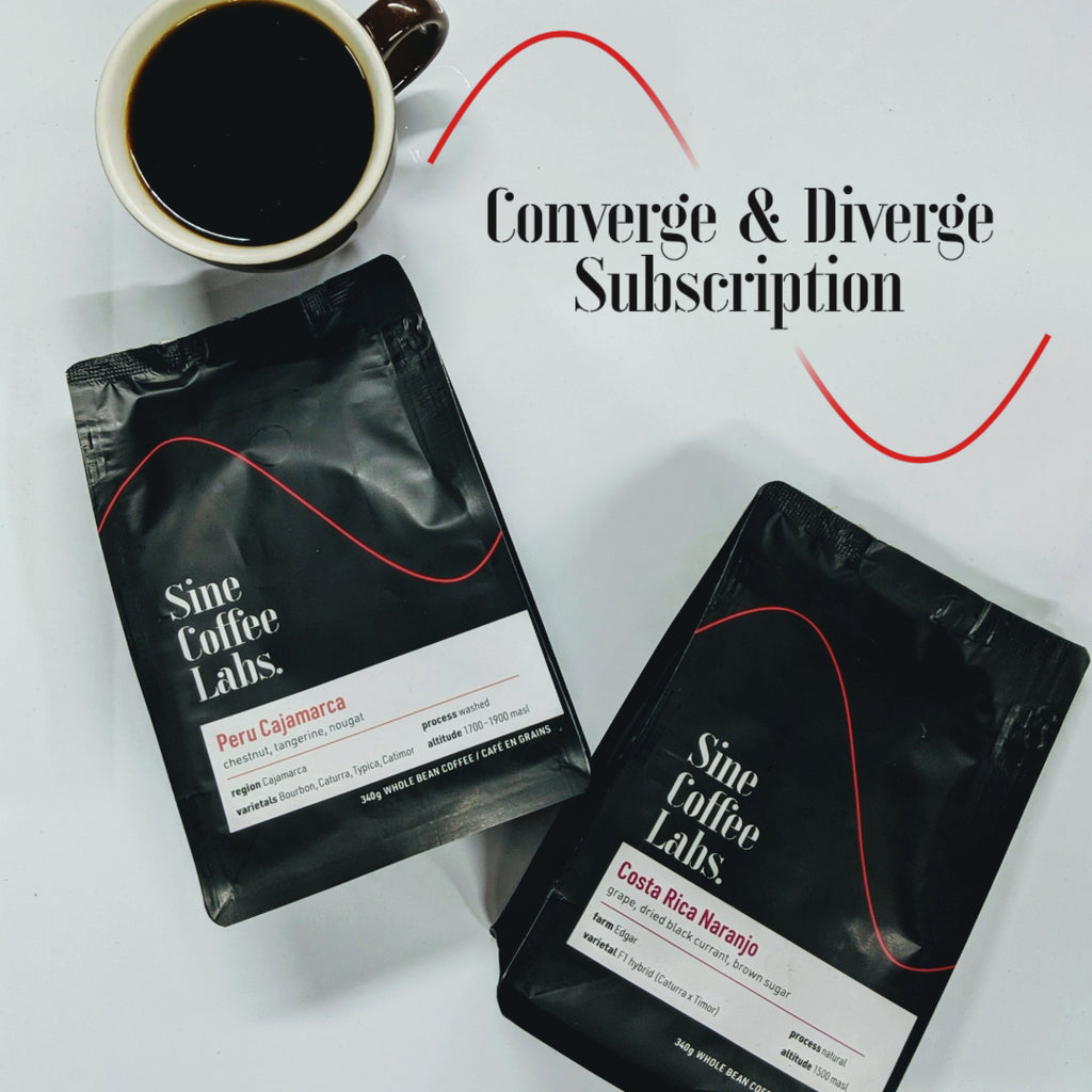 Converge & Diverge Subscription