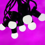 50M Festoon Package | 50 BC Opaque Cold White LED Lamps | 1M Spacing