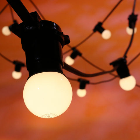 10M Festoon Package | 20 BC Opaque Warm White LED Lamps | 0.5M Spacing
