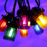 Royale Lanterns - 10M with 20 Coloured Lanterns @ 0.5M Spacing - Black Cable