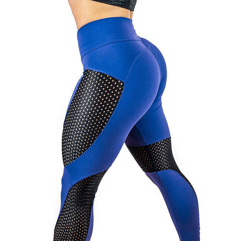 Women's Sporty Legging - Color Block, Mesh Mid Waist Blue Black Purple M L XL / Slim