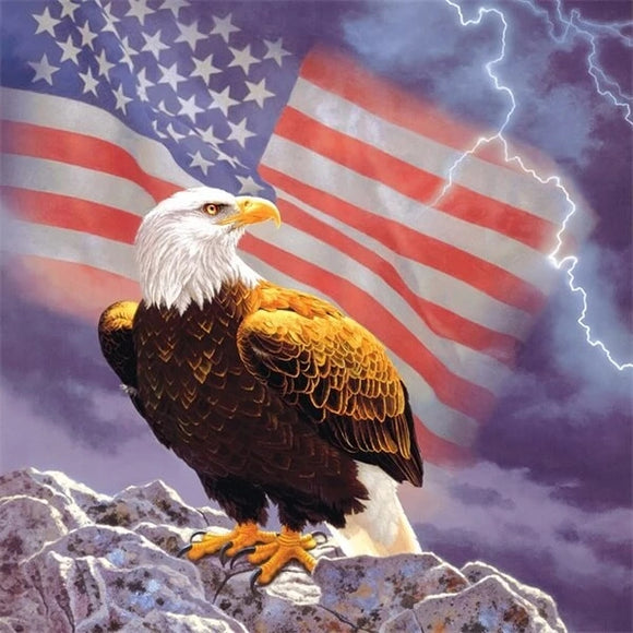 Lightning American Eagle DIY Diamond Painting