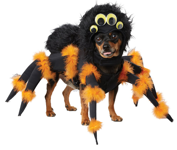 California Costumes Spider Pup Dog Costumes, Pet, Black/Orange, Large