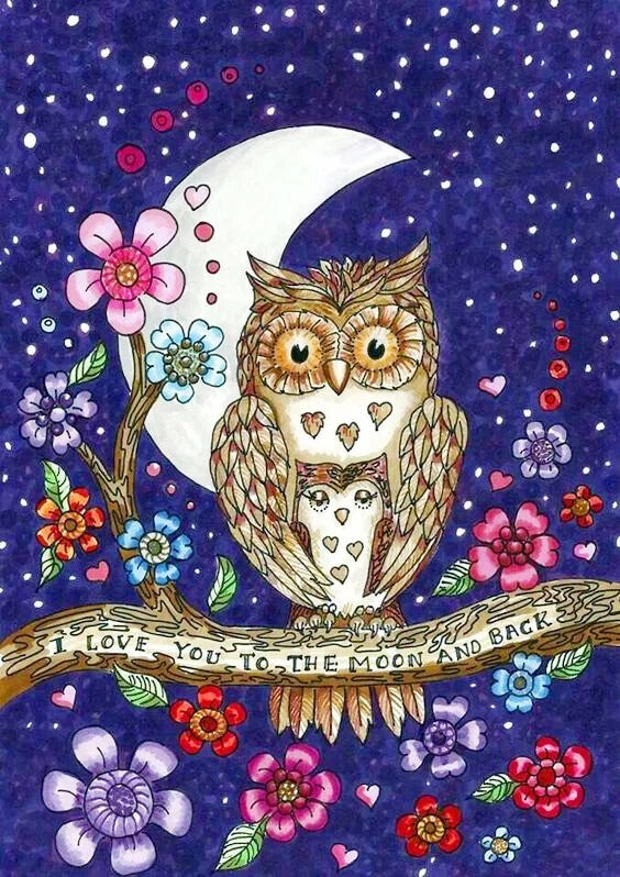 Love ToThe Moon Owl