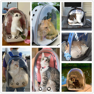Cat Carrier Bags Breathable Pet Carriers Small Dog Cat Backpack Travel Space Capsule Cage Pet Transport Bag Carrying For Cats