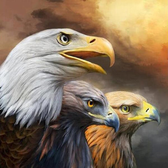 Three Eagles with sharp eyes DIY Diamond Painting