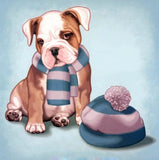 Puppy With Scarf And Bonnet