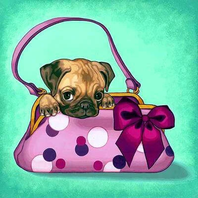 Cute Puppy Inside Bag