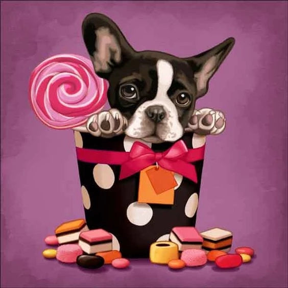 Awesome Gift Puppy With Sweets