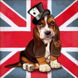 British Beagle Dog