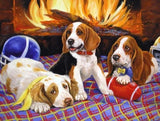 Three Beagle Dog Warming