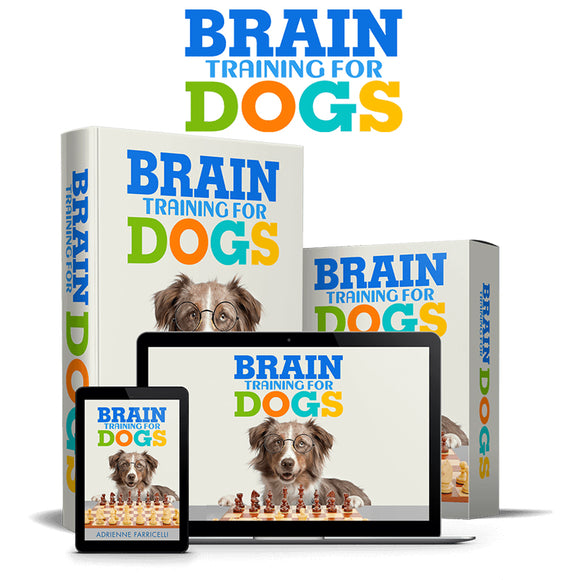 Brain Training For Dogs - Unique Dog Training Course