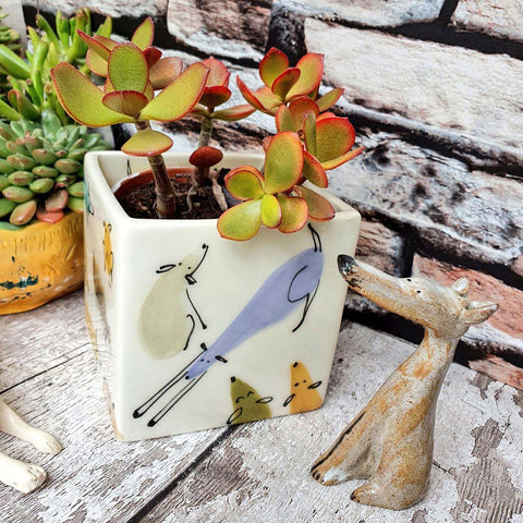 Hand illustrated colourful dogs ceramic cube planter limited edition