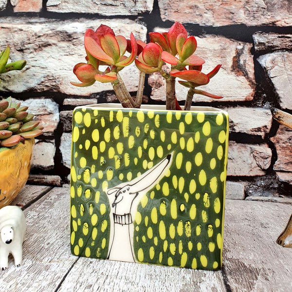 Limited edition Hand illustrated colourful dog ceramic cube planter Green and chartreuse