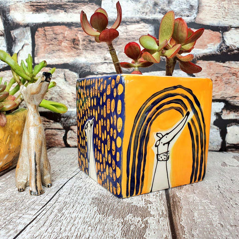 Limited edition Hand illustrated colourful dog ceramic cube planter Orange and Navy
