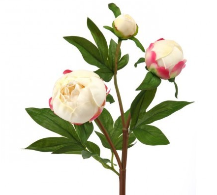 Real Touch Cream Peony Bud Spray