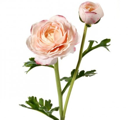 Real Touch Ranunculus - Blush