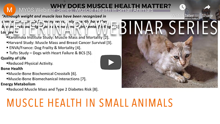 MYOS Webinar Series: Muscle Health in Small Animals
