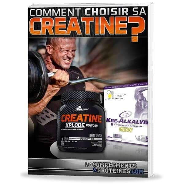 Comment choisir sa CREATINE ? Le guide complet