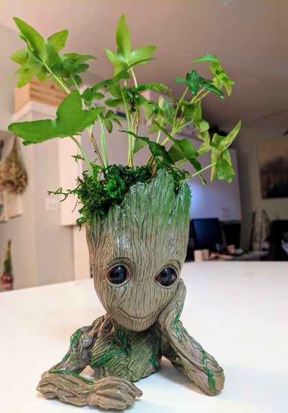 Have a Groot Day