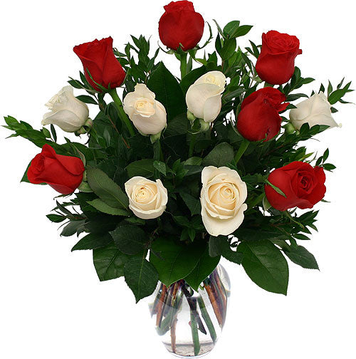 Interdependent White and Red Roses