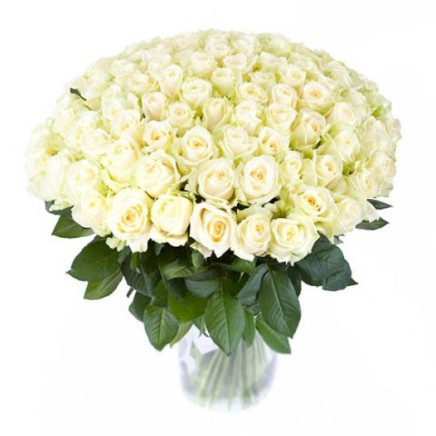 100 White Roses WoW