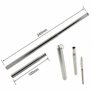 Telescopic Stainless Steel Straw