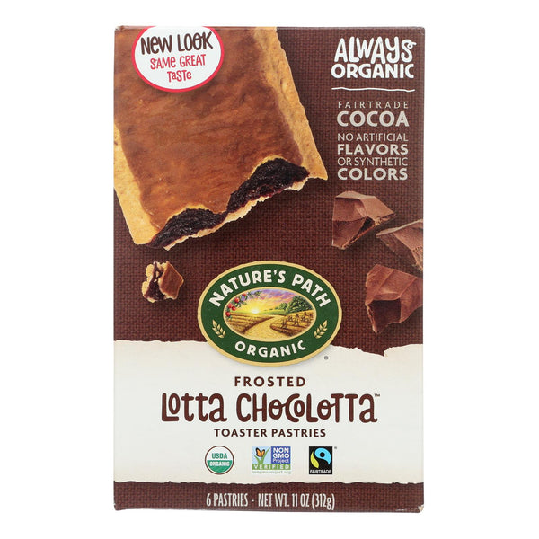 Nature's Path Organic Frosted Toaster Pastries - Lotta Chocolotta - Case Of 12 - 11 Oz.